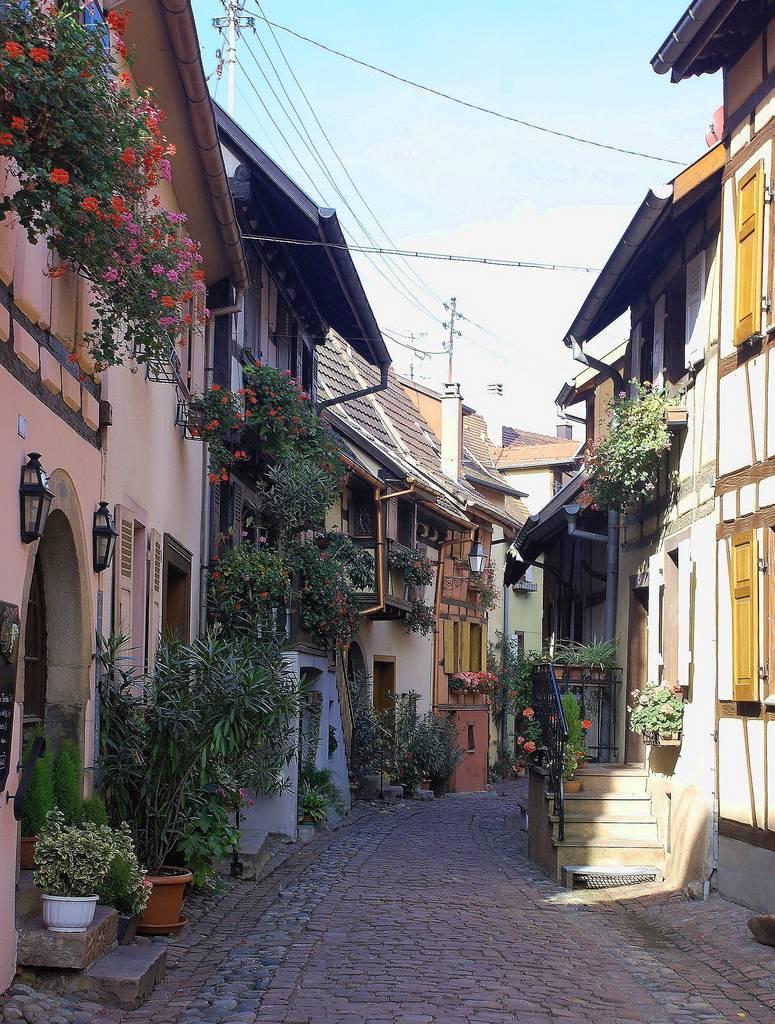 Eguisheim5