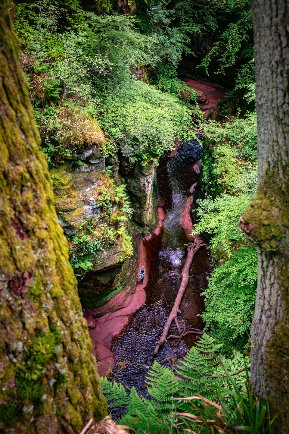 Blood-red water courses through Finnich Glen
