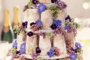 Sponge Cake Madness