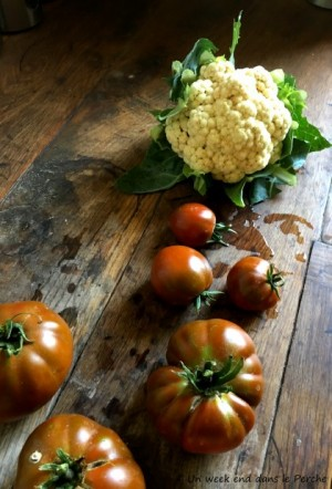 legumes bio en permaculture