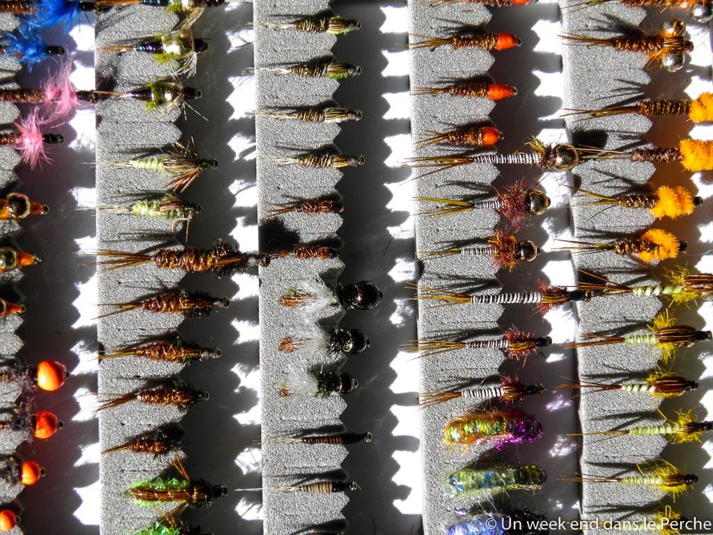 Les mouches de Boizard
