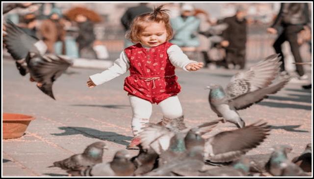 девочка и голуби
