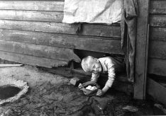 16-G-128-S-13755-C: Mrs. Hicks farm. Finding the stolen nest, Iredell County, North Carolina. 1930