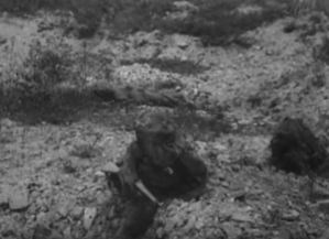 This image from Flashes of Action shows three snipers in camouflage rock suits.