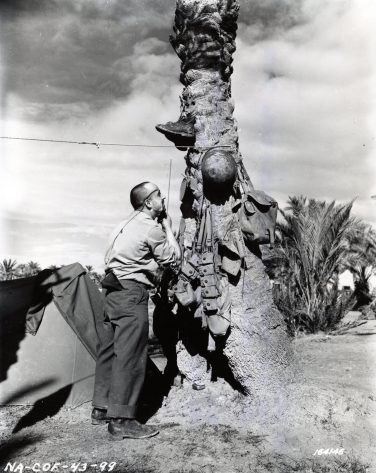 """Photo ID: 111-SC-164146. Original caption: """"Sgt. N.T. Vestuto shaving by his tent. Biskra, North Africa. Sgt. Vestuto is in the Medical Corps attached to the 301st Bomber Group."""" Date: December 24th, 1942"""