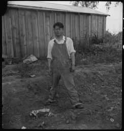 """Original Caption: """"Woodland, California. Member of a farm family of Japanese ancestry the day preceding evacuation. He said, """"I am going to have a vacation-- a long one--I had no long vacation since I was born."""" Photographer: Dorothea Lange. Date: May 20, 1942. Local ID: 210-G-C441 (NAID 537761)"""