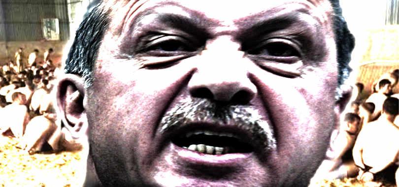 Erdogan-purghe