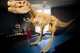 A giant tyrannosaurus Rex by Lego artist Nathan Sawaya at the Lego Art Exhibit At The Stamford Museum and Nature Center