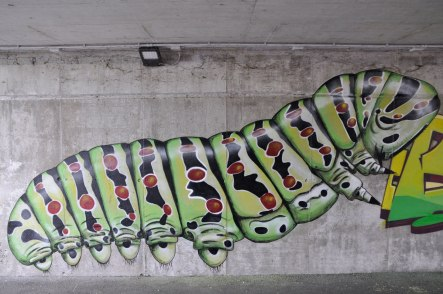 muri-boris-the-caterpillar-ferrara