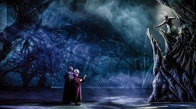 Pier delle Vigne - La Divina Commedia Opera Musical