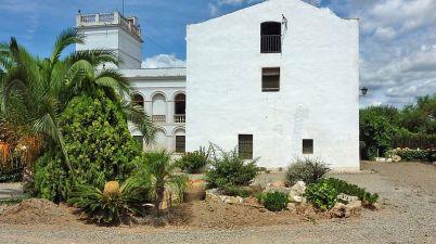 La fattoria di Joan Miró, ricordando la sua infanzia