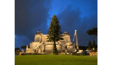 Spelacchio, albero di natale di Roma
