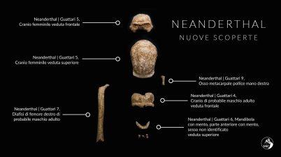 Neanderthal, nuovi reperti fossili dalla Grotta Guattari al Circeo