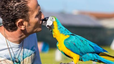 Pet Camper Tour, i tre appuntamenti del weekend nel Lazio