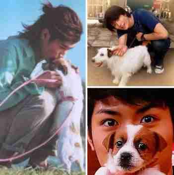 犬が好きな芸能人