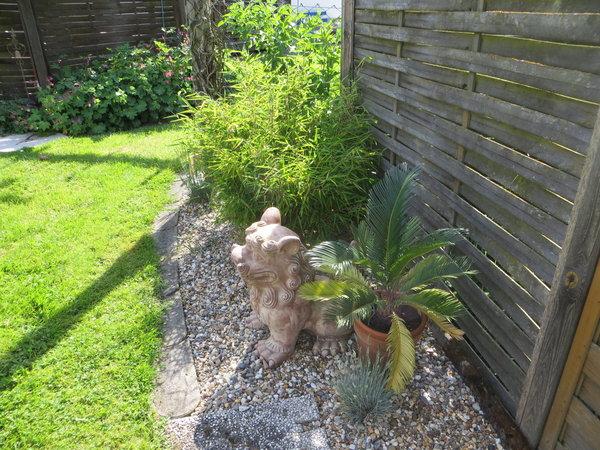 Kiesbeet an Terrasse verschönern - Mein schöner Garten Forum