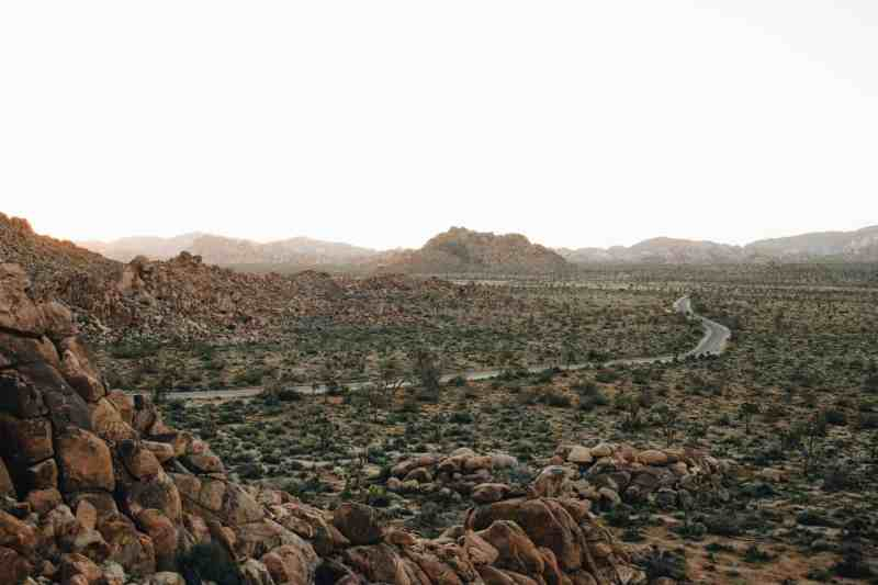 best joshua tree camping and campgrounds