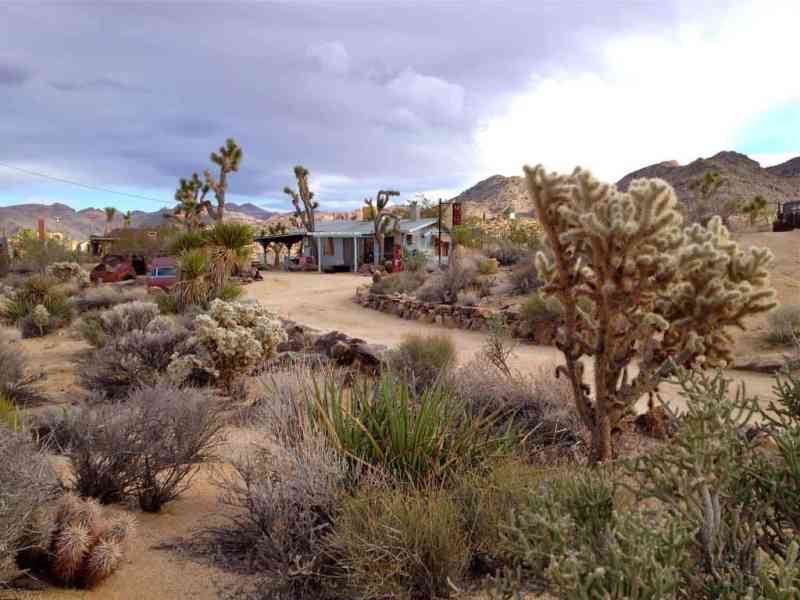 houses for rent in joshua tree