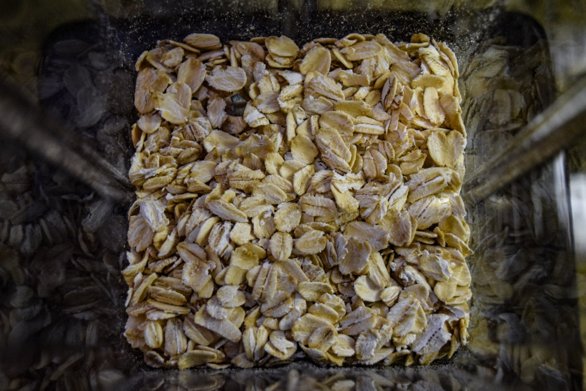 Oats in Vitamix dry grains container from above