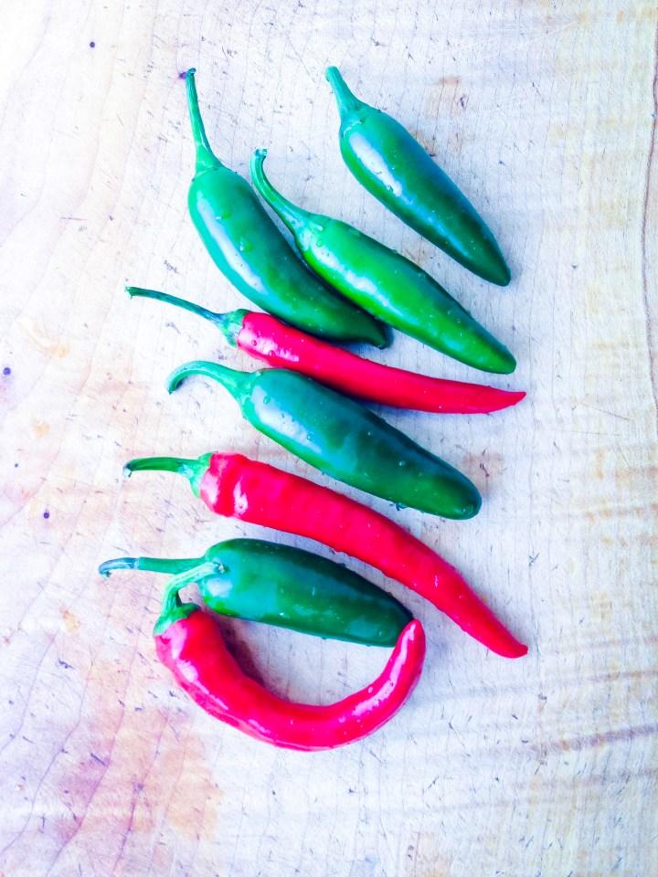 How To Make Quick Pickled Jalapenos // UPBEET KITCHEN
