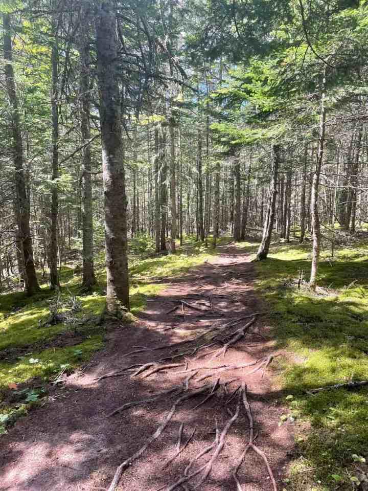 Gairloch trail in Prince Edward Island