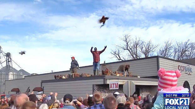 Chicken being tossed from the roof of a building into a crowd of people.