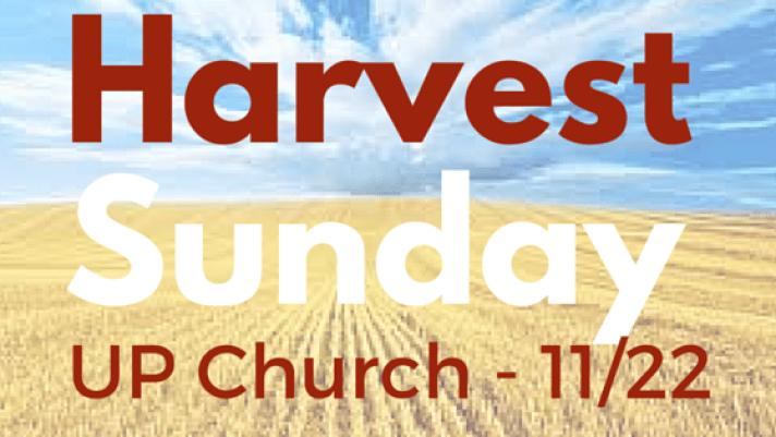 Harvest Sunday 11/22