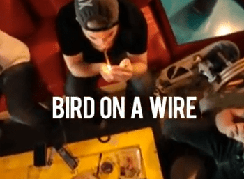 "[Video] ""Bird On A Wire 2.0"" - Solo For Dolo"