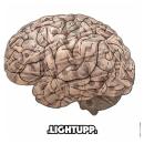 """[Audio] """"Money On My Mind"""" - LightUpp"""
