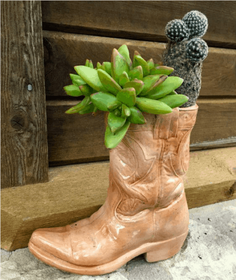 boot planter with succulents