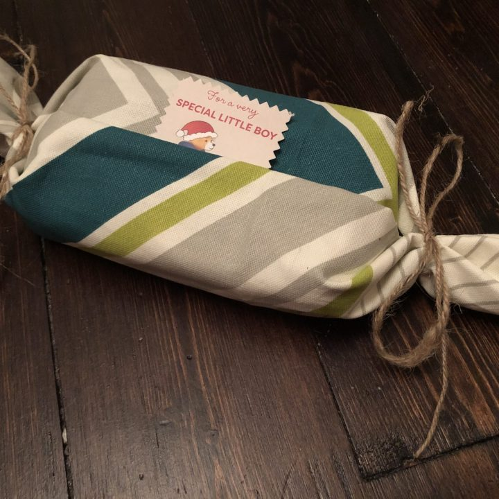 Plastic Berry Container and Upholstery Fabric as Gift Wrap