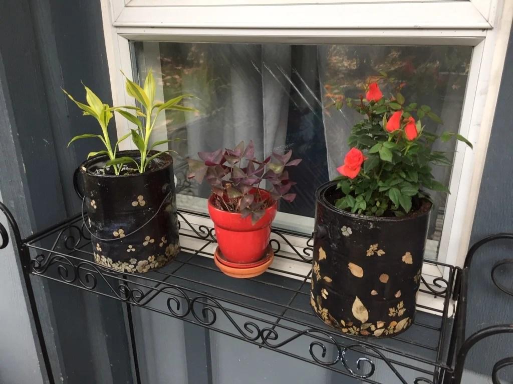 empty paint cans to decorative planters