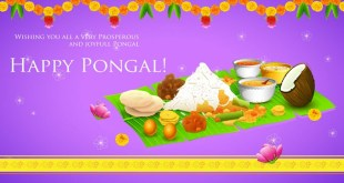 happy pongal festival wishes and images