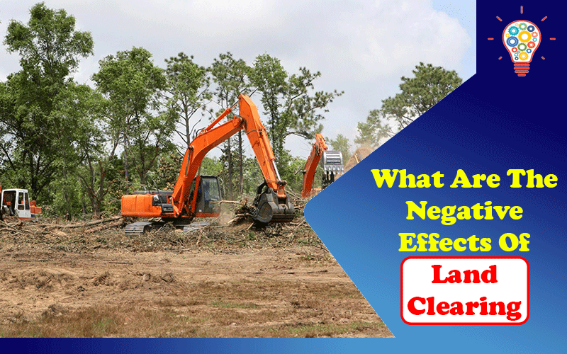 What Are The Negative Effects Of Land Clearing?