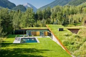 Perhatikan hal ini saat membuat green roof.