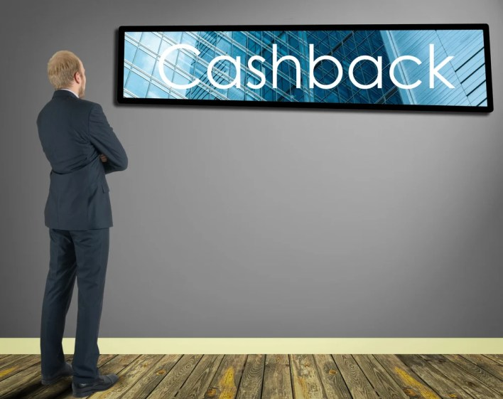 Guy Appreciating Cash Back