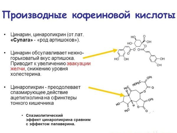 Patogenezinis smegenų kraujagyslių ligų gydymas vinpocetinu