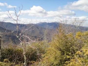 High open area on Miry Ridge Trail