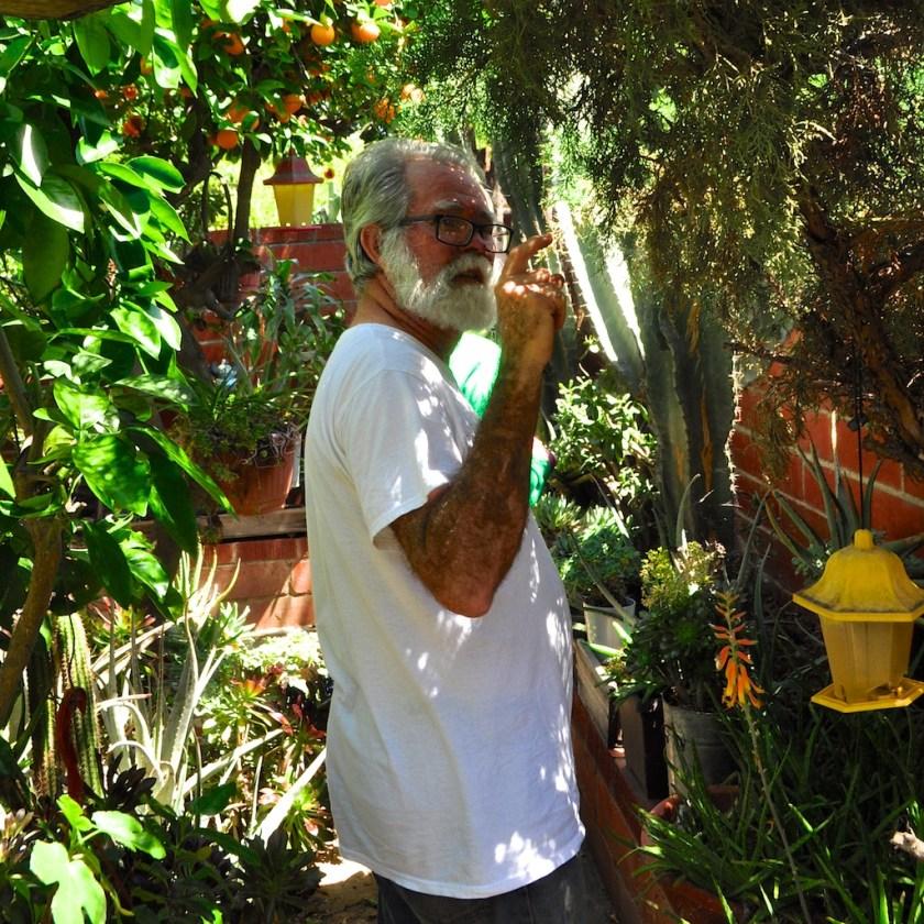 Backyard garden, Van Nuys