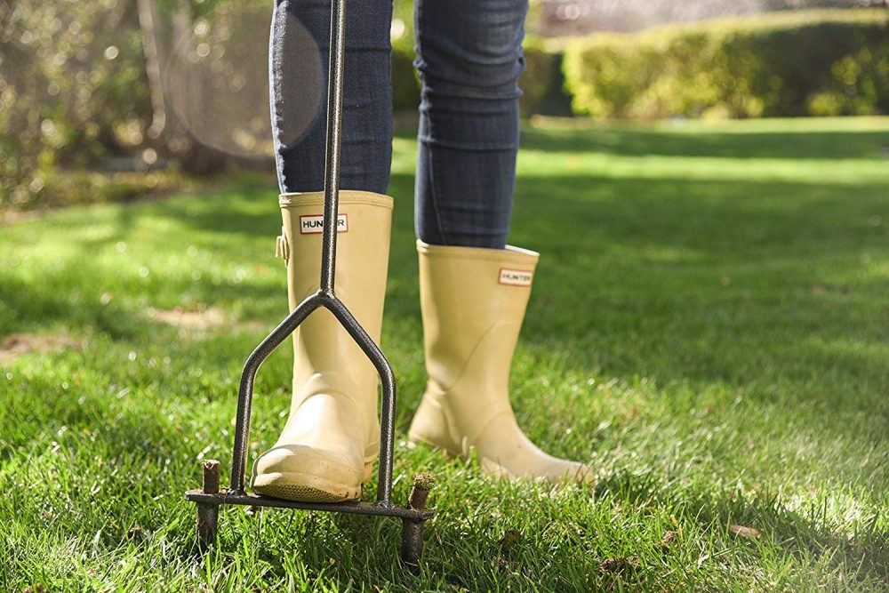 Easy Lawn Care in Autumn