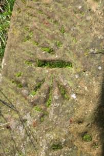 Derelict mossy benchmark