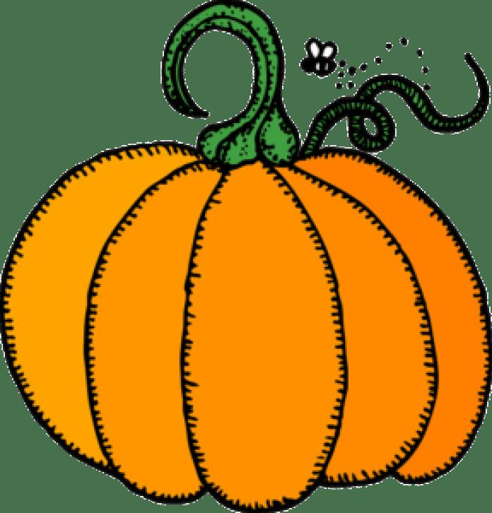 南瓜 (pixabay)