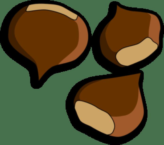 栗子 (pixabay)