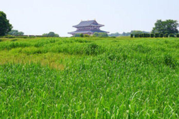 日本营建奈良时代的都城——平城京。平城京旧址(公有领域)