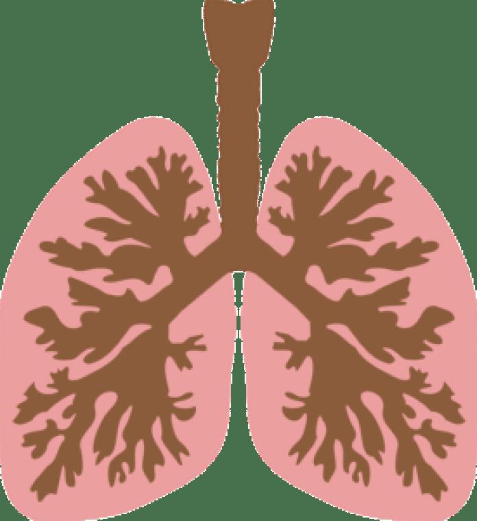 這就是為什麼那些使用冰敷降溫的人更容易得肺炎、肝炎、心肌炎、腦炎等疾病的原因(pixabay)