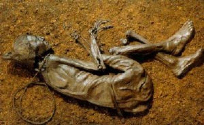 Tollund人于1950年被发现,现在在丹麦的Silkeborg博物馆展出。(Chocho8 / CC BY-SA 4.0 )
