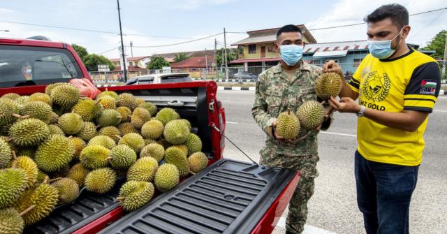 tauke emas belanja durian