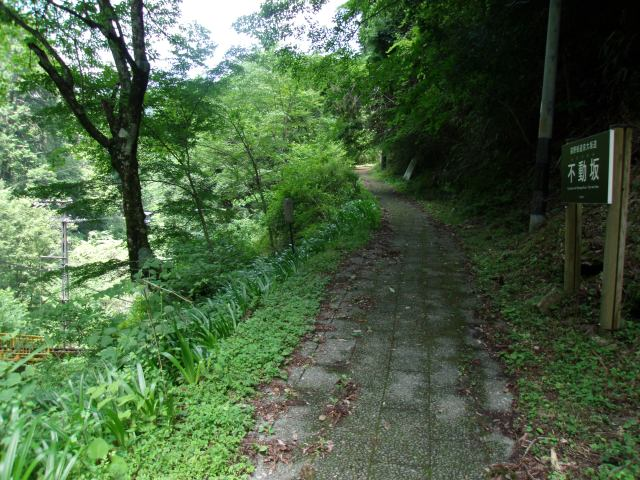 Kyo-Osaka-no-Michi.  One of the pilgrimage routes in Kumano.