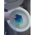 Scrubbing the toilet.