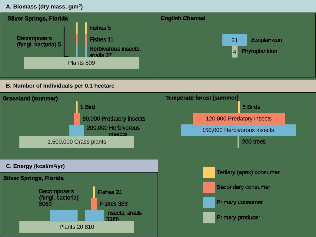 File Figure 46 02 02